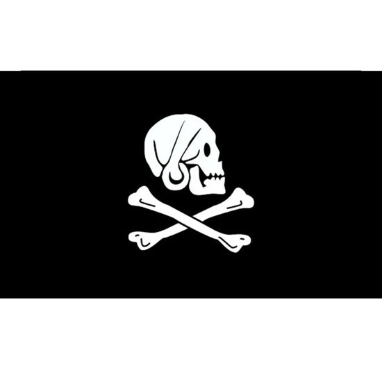 Henry Avery Pirate Flag - Skull & Cross Bones