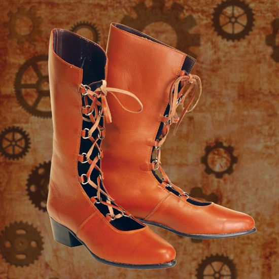 Picture of Brown High Top Ladies Boots