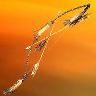 Picture of Navajo Antler Bow