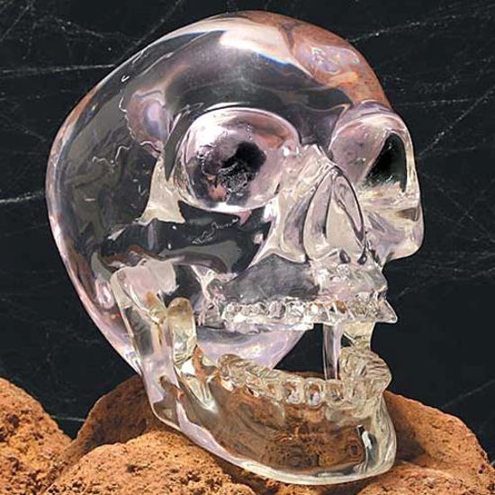 Picture of Clear Skull