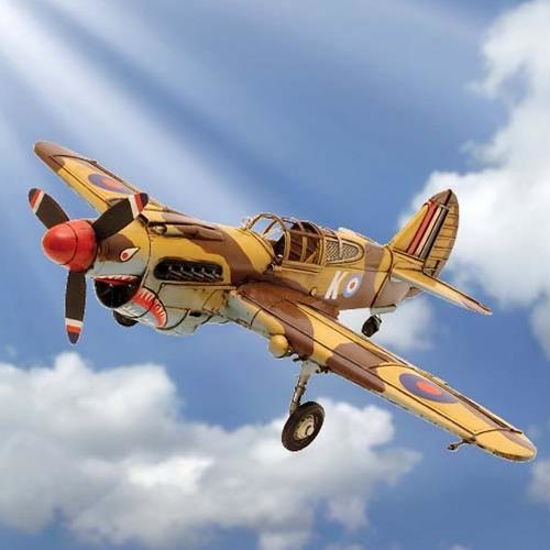 Picture of P-40 Warhawk WWII Fighter Plane
