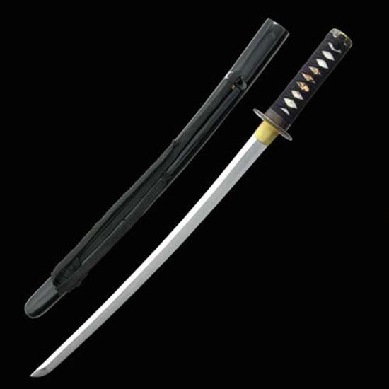 Picture of Practical Wakizashi