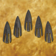 Type 16 Curved Broad Arrowhead (set of 5)