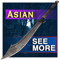 Picture for category Samurai & Asian Swords