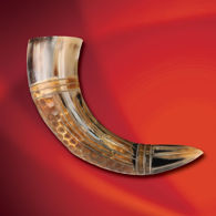 Dragon Carved Drinking Horn
