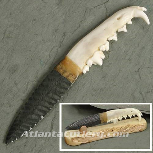 Coyote Jaw Obsidian Blade Knife