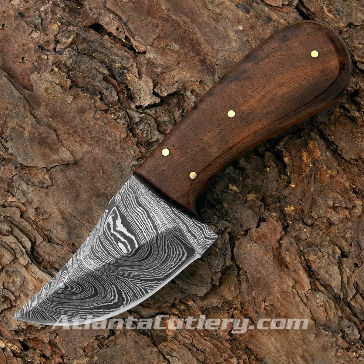 Damascus Skinner Knife with Polished Walnut Scales
