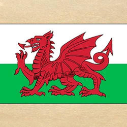 Picture of Welsh Dragon Flag