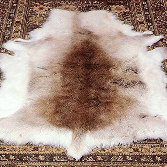 Picture of Reindeer Fur
