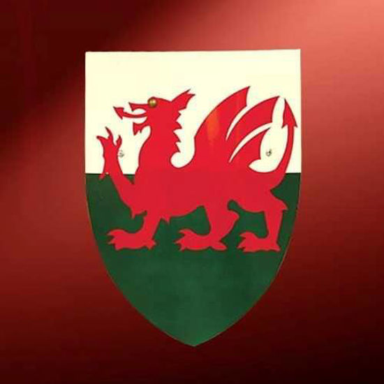 Picture of Welsh Dragon Toy Shield