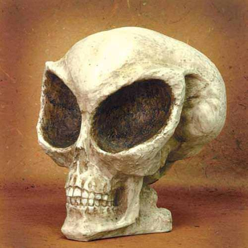 Picture of Life-Size Alien Skull