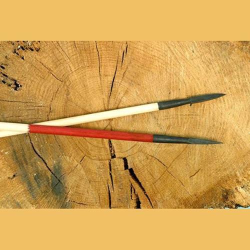Picture of Bodkin Point Arrow
