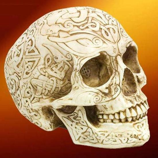Picture of Full Size Celtic Skull