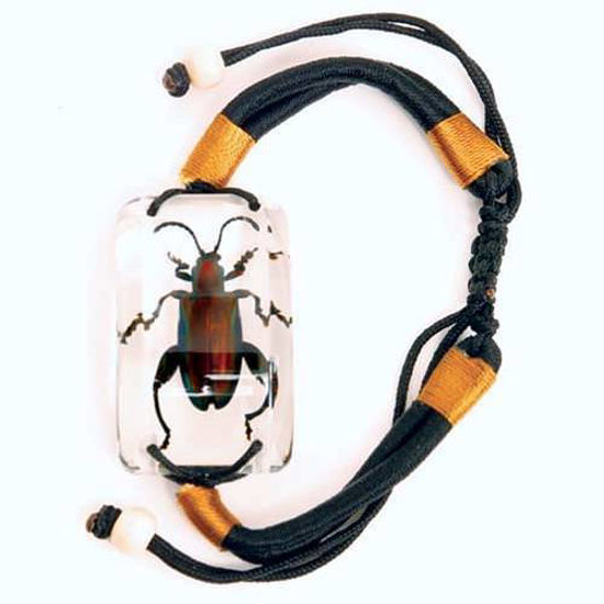 Picture of Insect Art Jewel Frog Beetle Bracelet