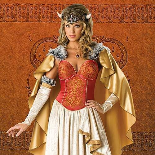 Picture of Viking Princess Complete Costume