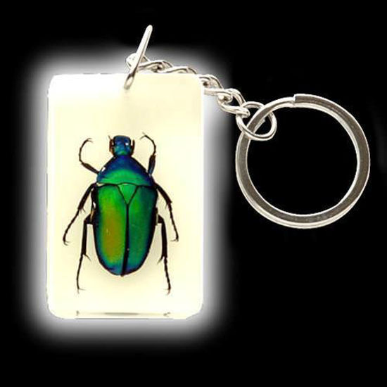 Picture of Insect Art Green Beetle Keychain
