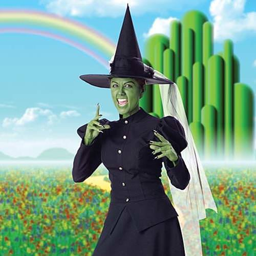 Picture of Wicked Witch Complete Costume
