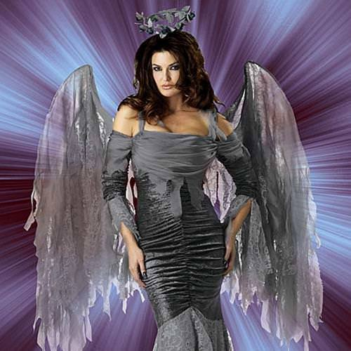 Picture of Fallen Angel Complete Costume