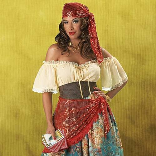 Picture of Fortune Teller Complete Gypsy Costume