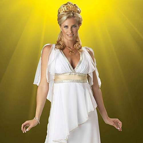 Picture of Greek Goddess Ladies Complete Costume