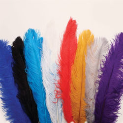 Decorative Hat Ostrich Feather Plumes