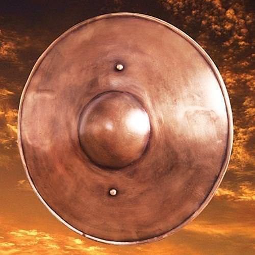 Picture of Pugnum Shield