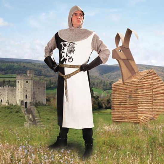 Picture of Sir Lancelot Costume