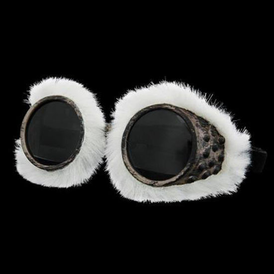 Picture of Arctic Exlorer Goggles