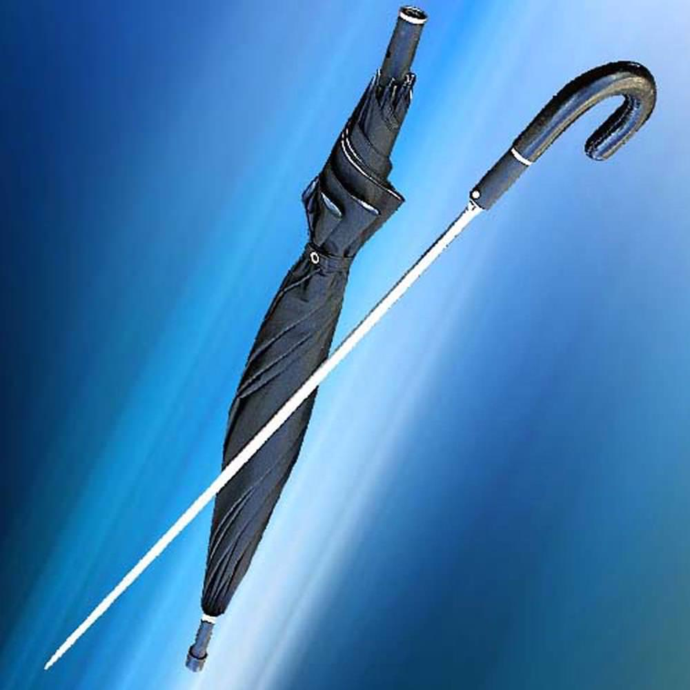 Picture of Rapier Umbrella