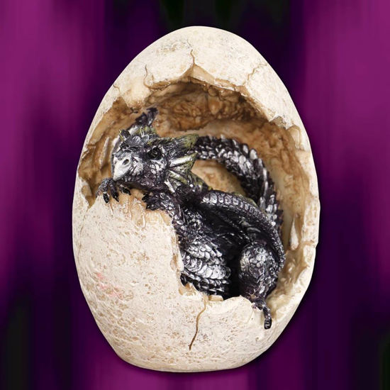 Picture of Dragon Hatchling Purple