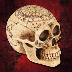 Picture of Astrology Skull