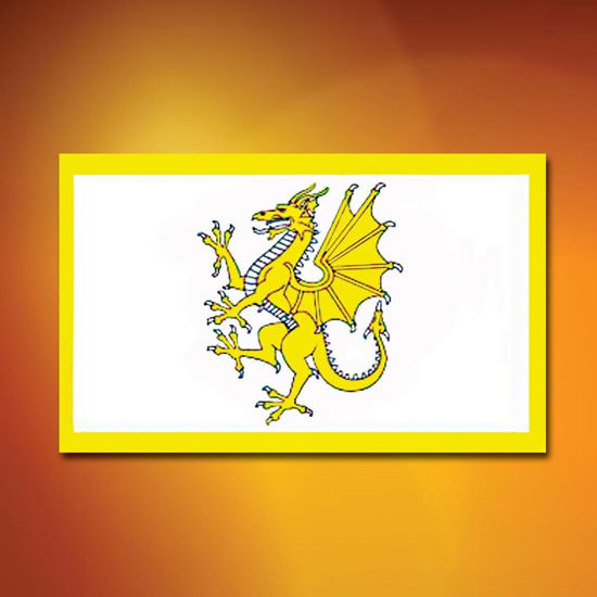 Picture of Golden Welsh Dragon Flag