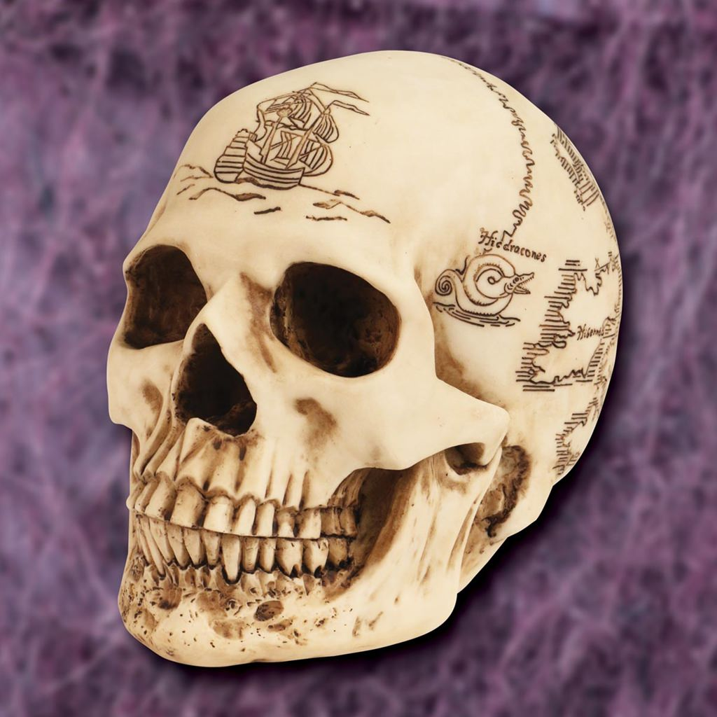 Picture of Treasure Map Skull