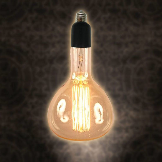 Picture of Edison Style 60 Wt Tube Bulb