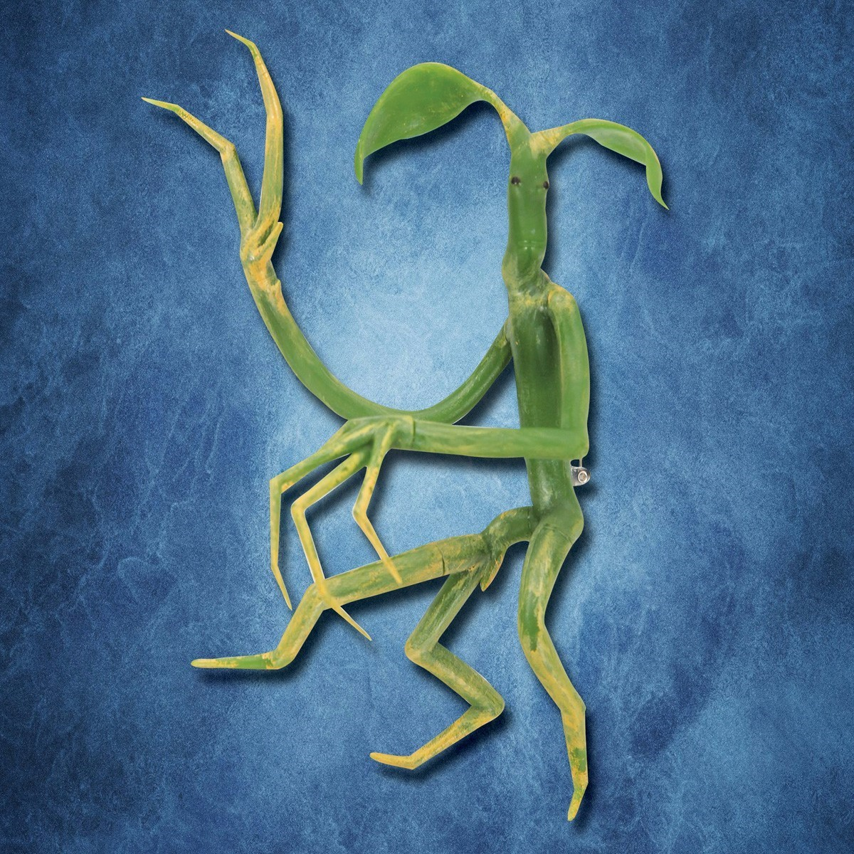 Picket Bowtruckle Pin