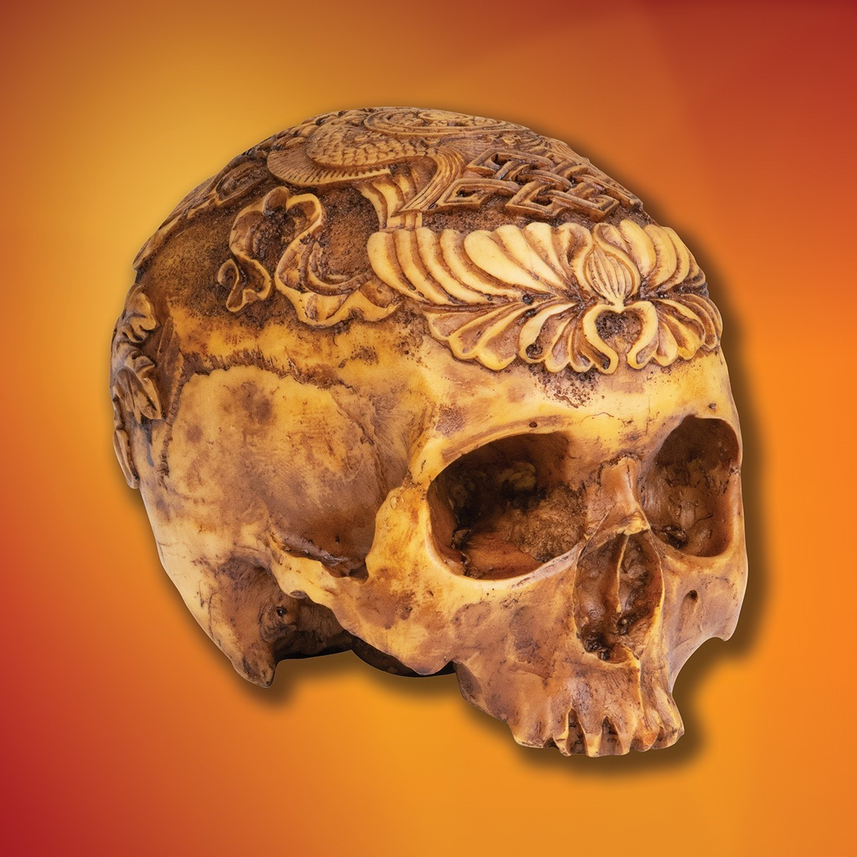 Cold Cast Resin Tibetan Kapala Skull Cap