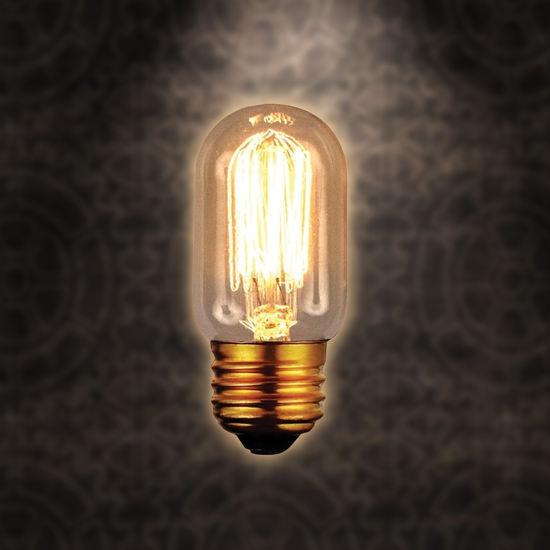 Edison Style 40 Wt Dome Evie Bulb