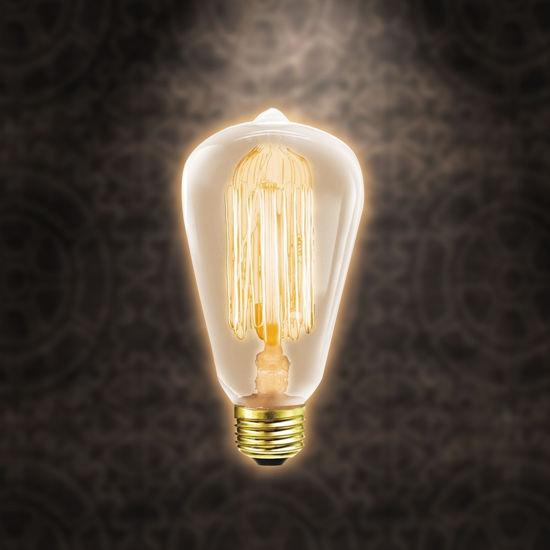 Edison Style 40 Wt Elsa Bulb