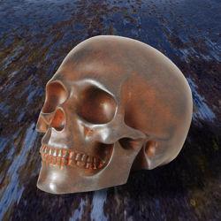 Iron Skull in Metalized Resin