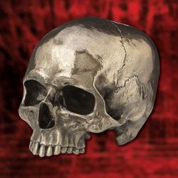 Picture of Golden Skull Head