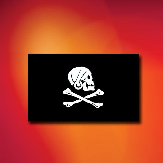 Henry Avery Indoor Outdoor Pirate Flag