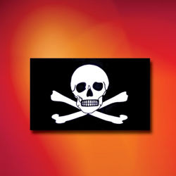 Skull and Crossbones Indoor Outdoor Pirate Flag