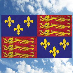 Indoor Outdoor Nylon Flag of King Henry VIII