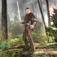 Picture for category Robin Hood