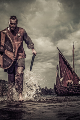7 Facts to Know About the Vikings : History